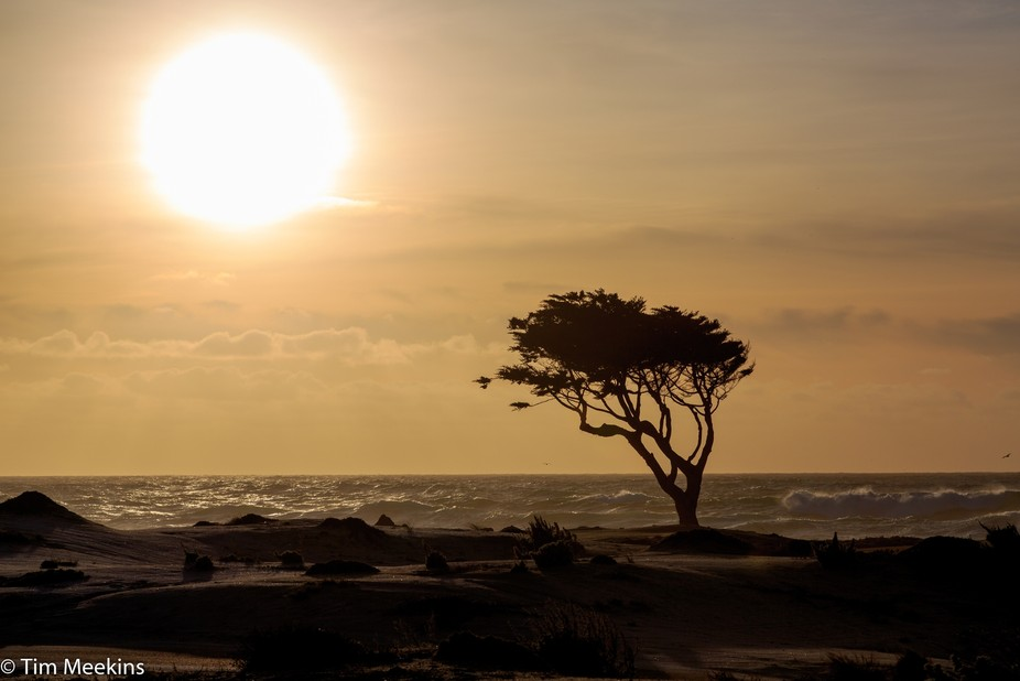 Pebble Beach, California