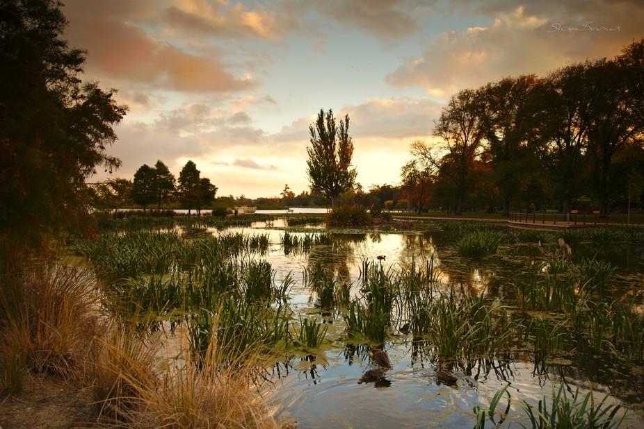 Lake Wendouree as golden hour turns to sunset, a vista of water, reeds and trees with colour aglow.     Lake Wendouree, Ballarat, Victoria, Australia      K1SB0897