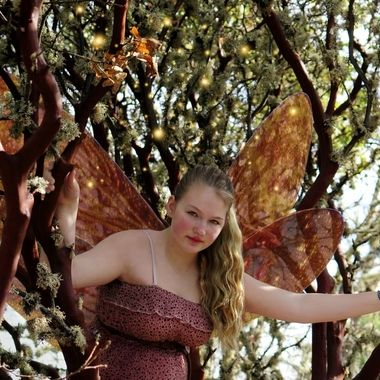 Grace the Forest Fairy alights in a Manzanita Tree.