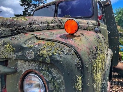 Moss covered vehicle in the old Willow Court antiques #mosscovered #oldvehicle #greenmoss #willowcourt #Hey_ihadtosnapthat #discovertasmania #tasmaniagram #hobartandbeyond #instatassie #tassiepics #tassie #hobart #southerntasmania  #tassiestyle #tasmaniad