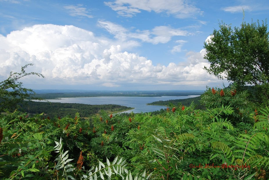 I stopped my car on the side of a highway and snapped this picture. Greers Ferry Lake, Arkansas