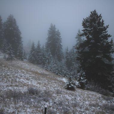 Hamilton Hill on a foggy day
