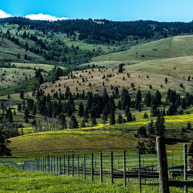 Nicola Stock ranch is on the old Highway from Merritt to kamloops
