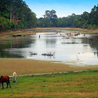 Tranquil Cambodia!
