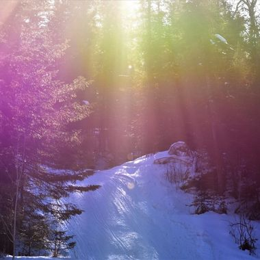 Always looking for new places and times to shoot them. I noticed how the light was filtering through the trees on the snowmobile trail down the side of a steep hill. It was around 2:00 p.m. Nikon D3400 Landscape no filters