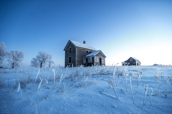 Frosted by aaronjgroen - A Low Vantage Point Photo Contest