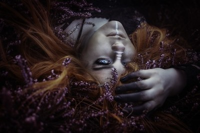 Violet Heather