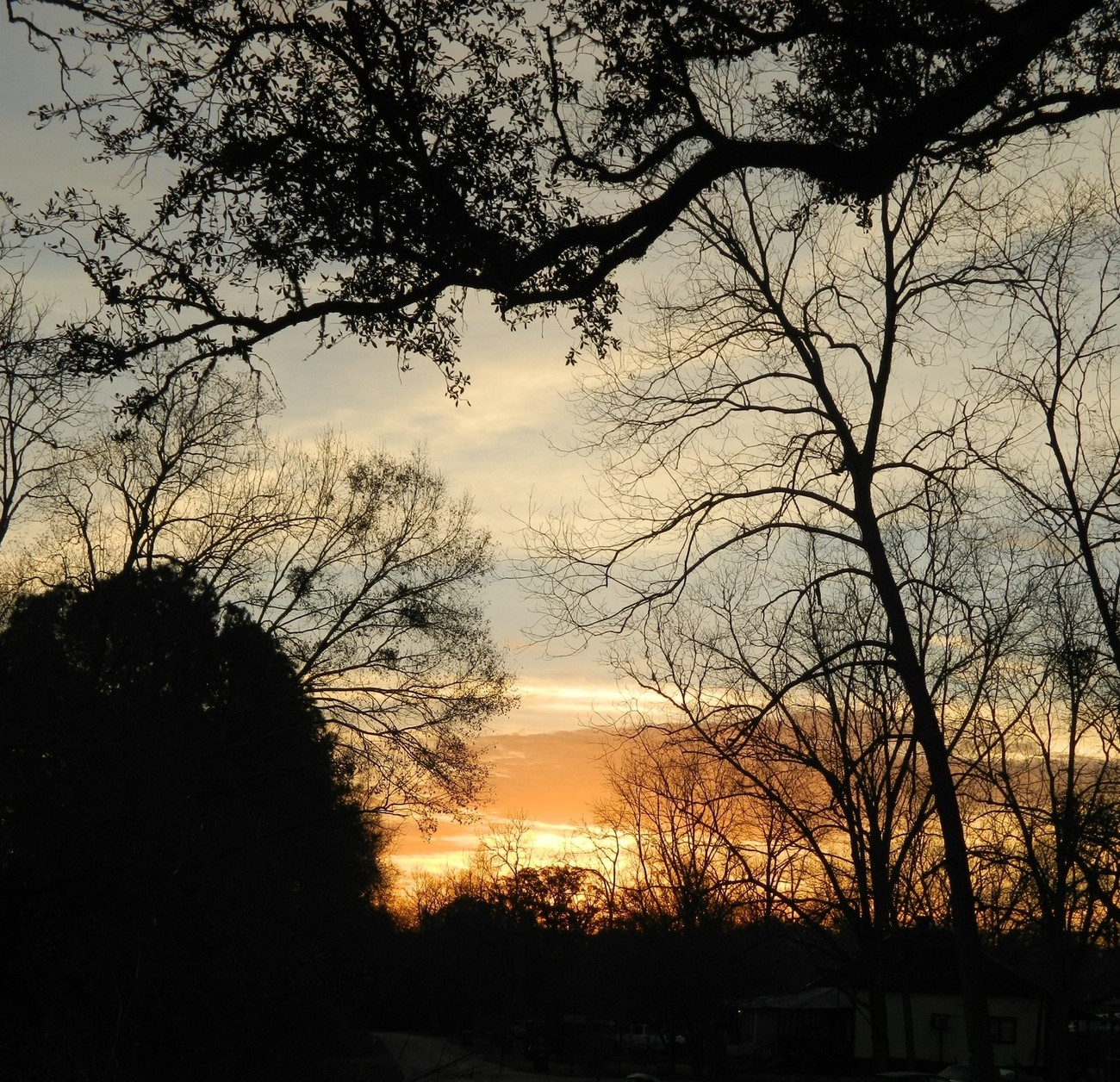 South Alabama Sunrise