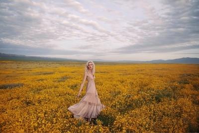 Wildflower dream..