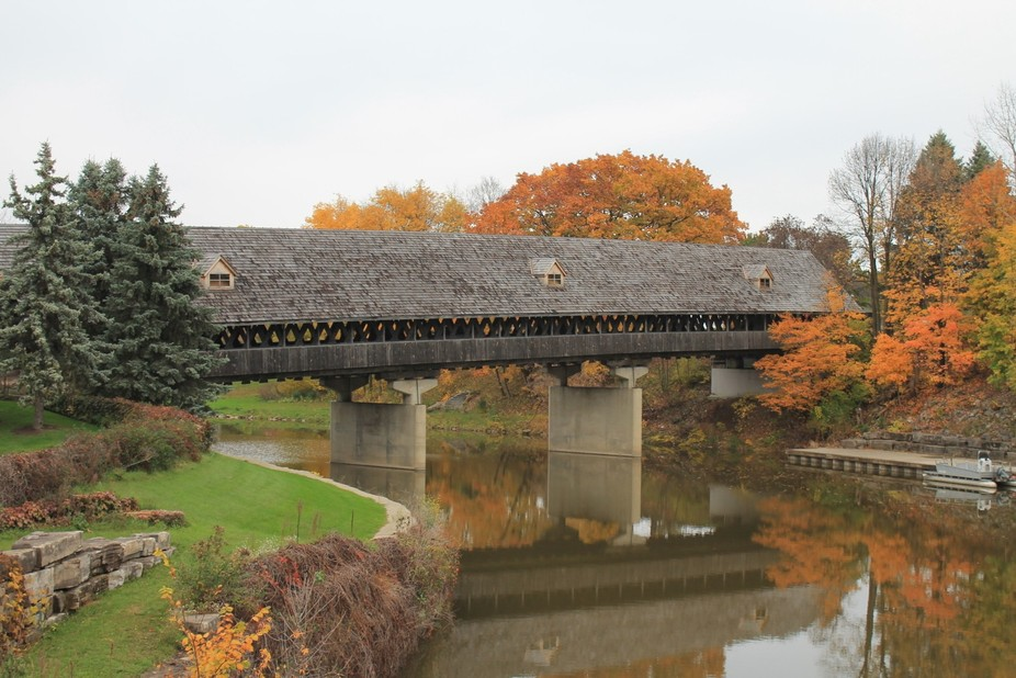 The last wood covered bridged pulled across a river with oxen in the state of Michigan.