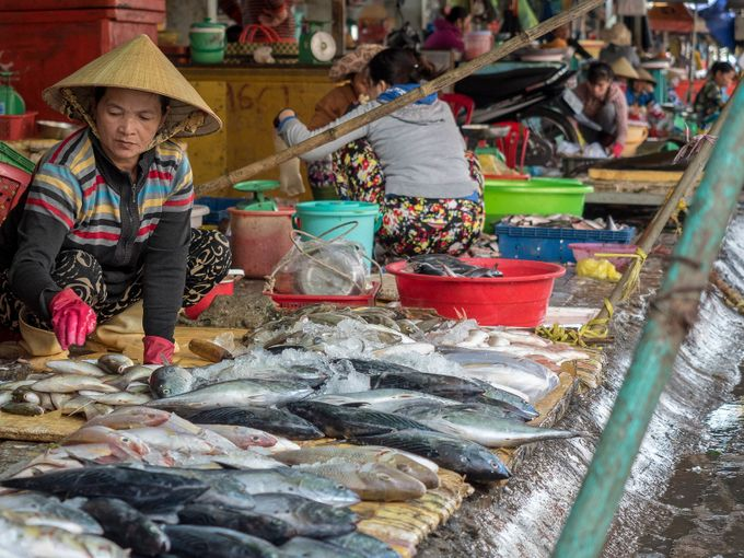 The Fish Ladies by kenderby - Food Markets Photo Contest