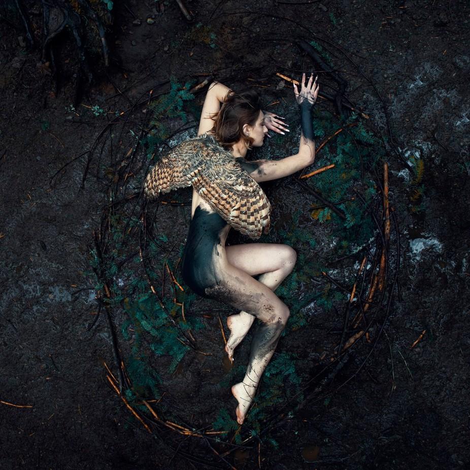 Fallen Bird  by Kavanthekid - Fantasy In Color Photo Contest