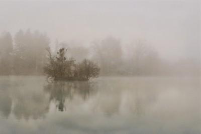 Foggy, Misty Morning Remix
