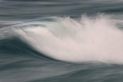 _B6A5890 gale winds