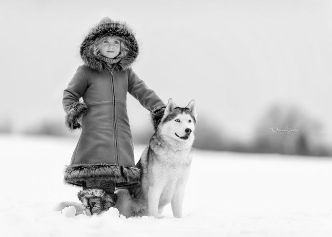 Arctic friends by danielventer - Winter In Black And White Photo Contest