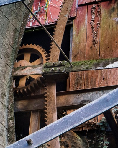 Fitz Water Wheel Gears, Falls Mill, Belvidere Tennessee, Color