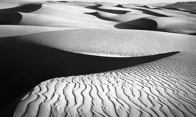 82 Pismo Dunes by ronaldwebb - Composition And Leading Lines Photo Contest
