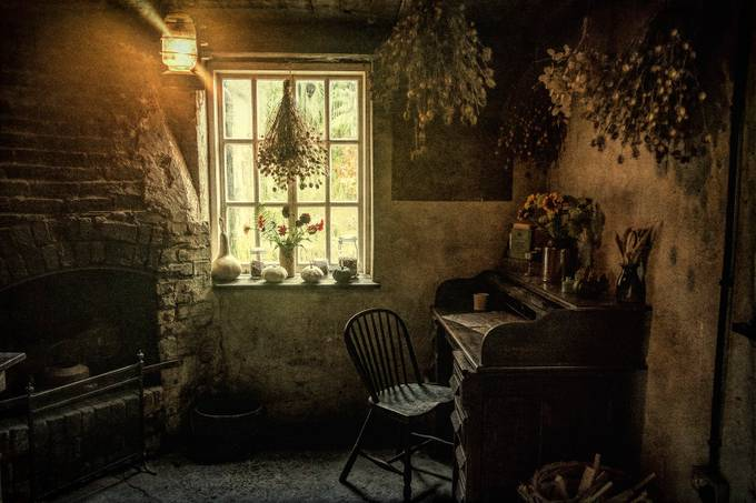The head gardener's office by SteveCrampton - My Favorite Chair Photo Contest