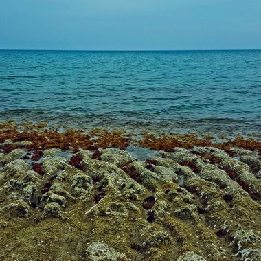 I took this photo when me and my wife were walking on the beach, at Iskele, Cyprus, in February 2018. It was a warm and sunny day. We enjoy walking along the beach in all kinds of weather. This was one of the photos that I took that day.