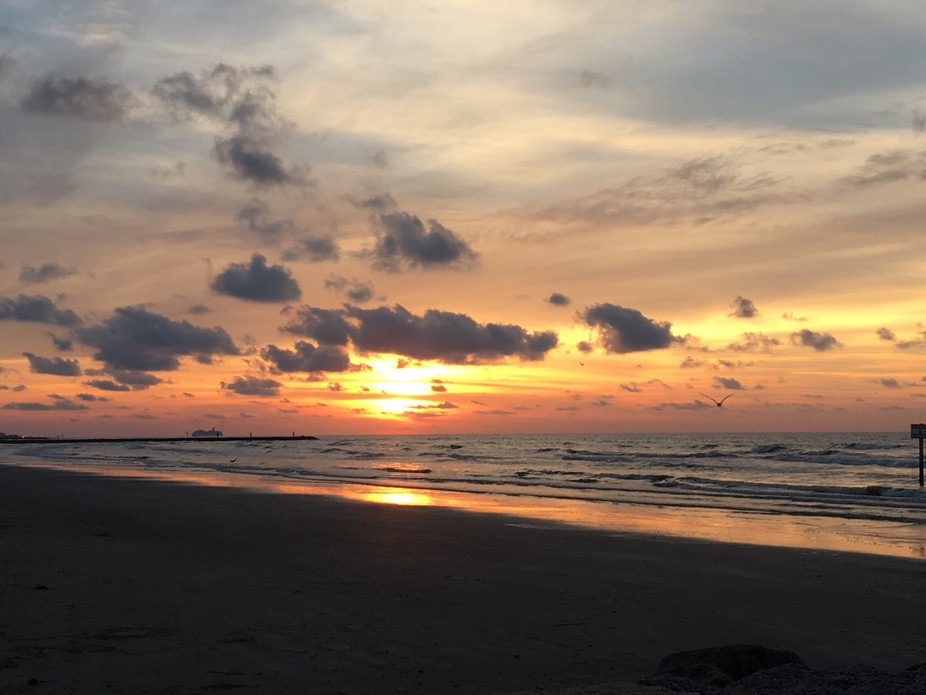 Gulf Coast Sunrise