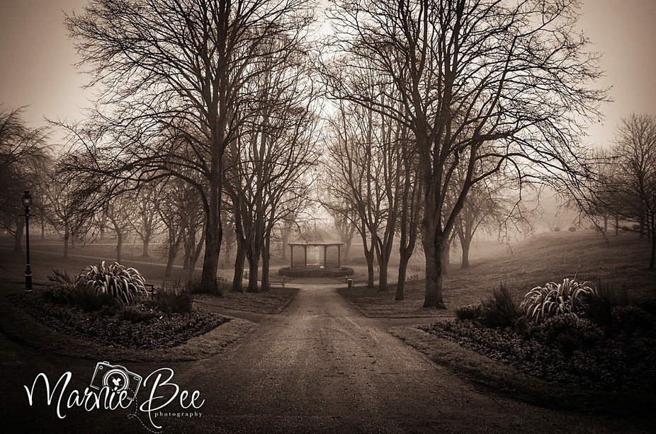 A very gloomy, foggy morning at my local park, Belle Vue. Little tweeking and it turned into a ve...