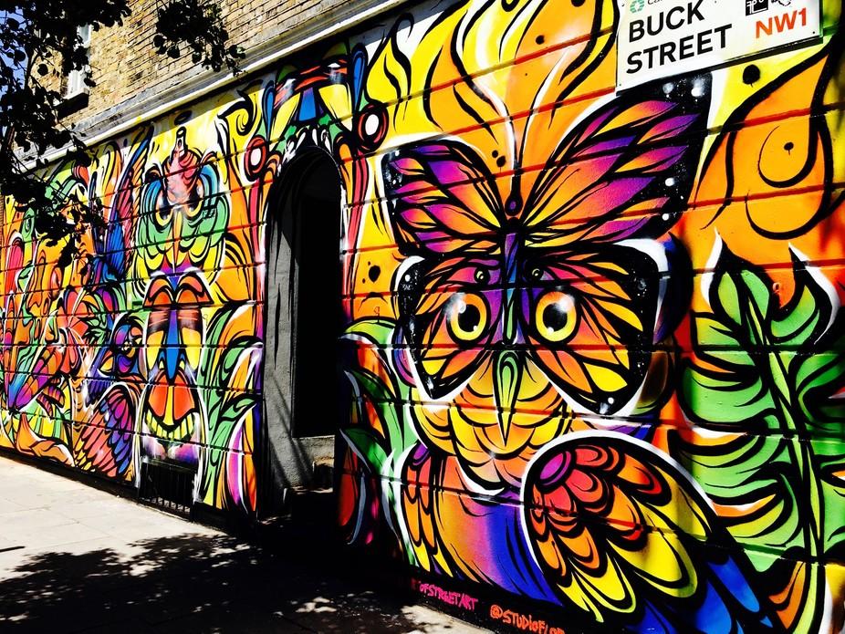Camden street/bird art
