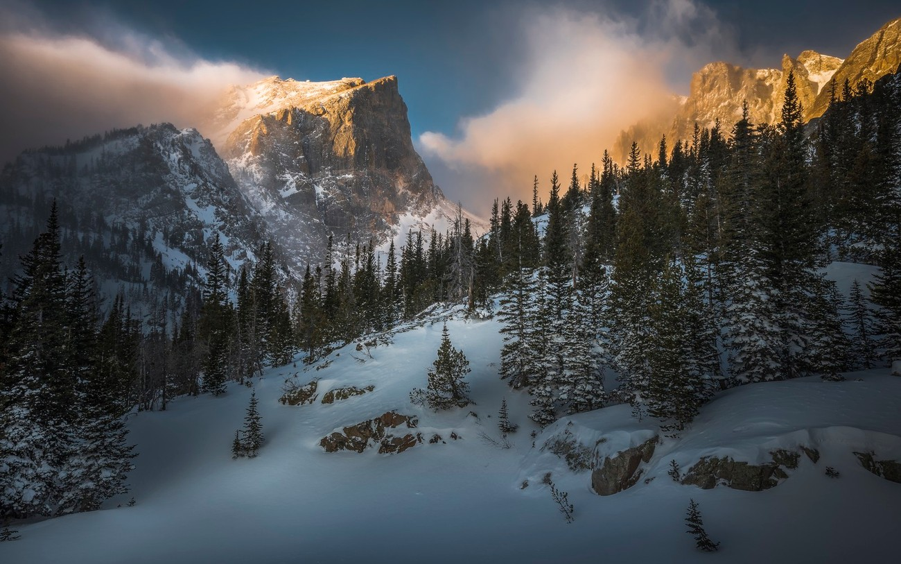 The Cold Winter Photo Contest Winners