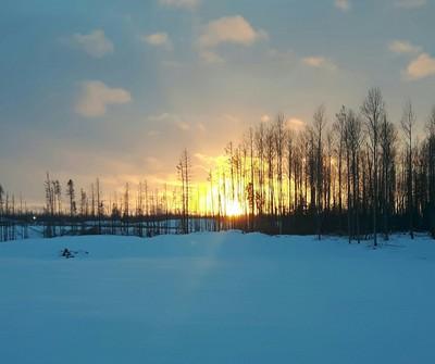 Northern Alberta Sun