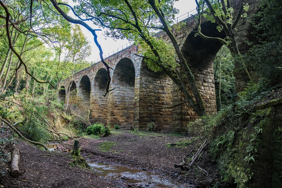 This viaduct  has  long been hidden  from  the road that passes alongside it , only recently has it been exposed   when trees and bushes  were  cut  back to expose it