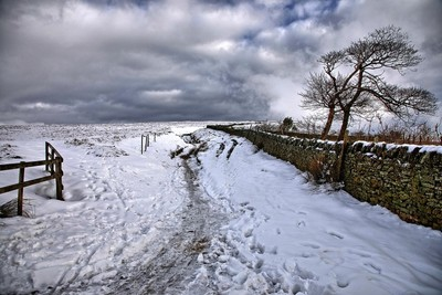 Well trodden path in the snow
