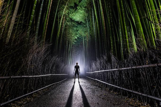 The Arrival by gunnarheilmann - The Magic Of Japan Photo Contest