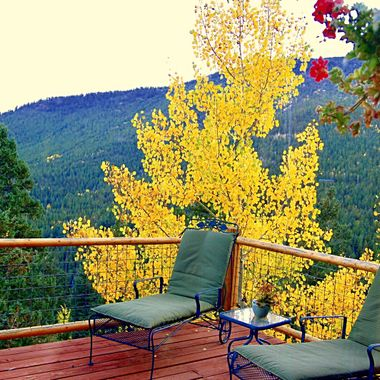 Colorful fall mountain living in Colorado!