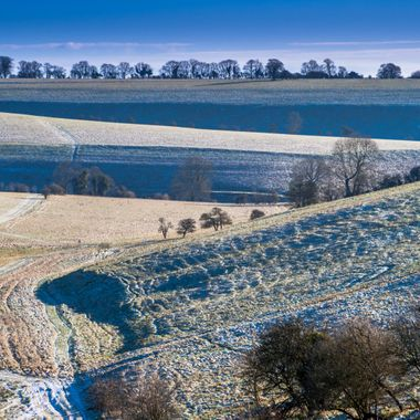 Frosty vista