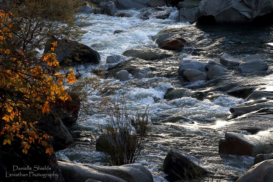 This was taken on a trip to Nevada City. It was a bit difficult as the sun was in front of me, bu...