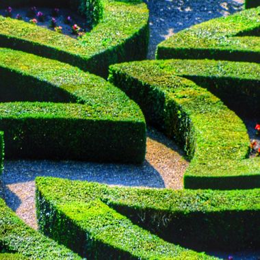 French Garden. Loire Valley, France