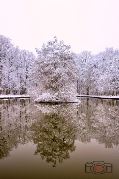 lac in winter