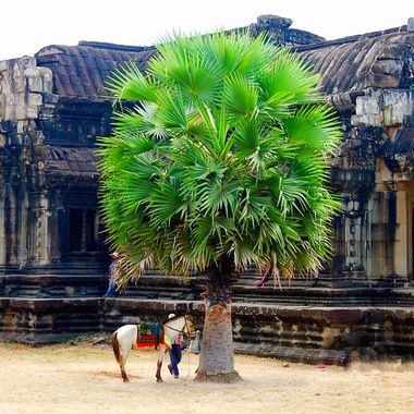 Today vs ancient Angkor Wat, Cambodia!