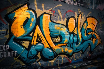 Spent the day checking out all of Melbourne's street art, there is a lot of talent around the lane ways. . All shot on Canon 60D ISO 100 f-1.8 50mm Varying shutter