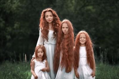 Ginger family