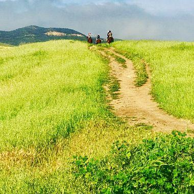 Magnificent riding trails through the Santa Monica mountains