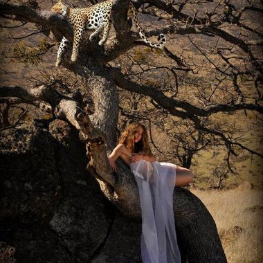 Jenelle with Leopard in a tree