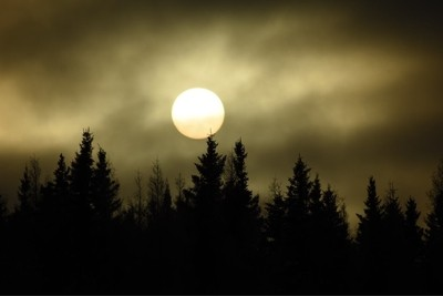 Sunset over the spruce trees in Fort Albany, Ontario