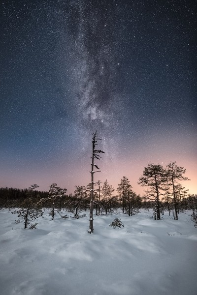 Milky Way in the wilderness