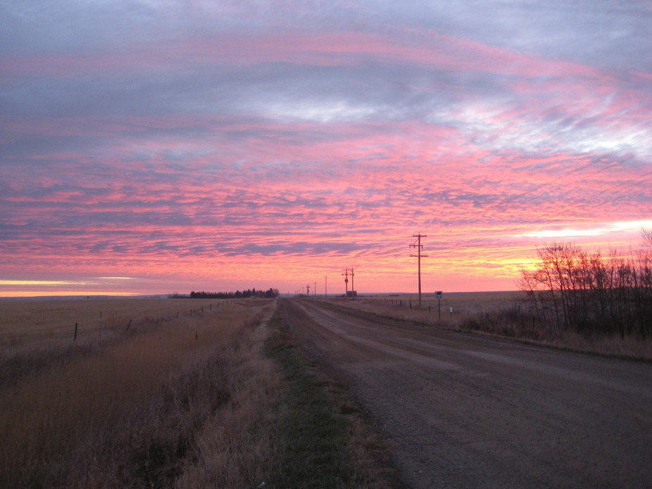 Looking east from Hwy 867 North of Foremost AB early morning sunrise.
