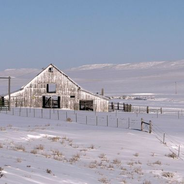 A weathered white Wyoming barn in the winter.