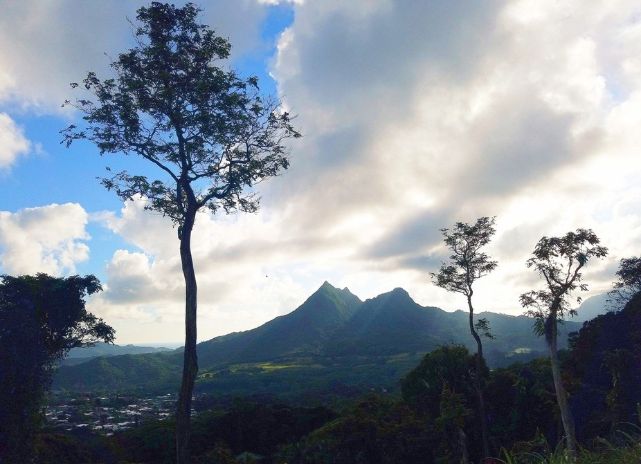 Olomana Three Peaks seen from Pali Hwy.