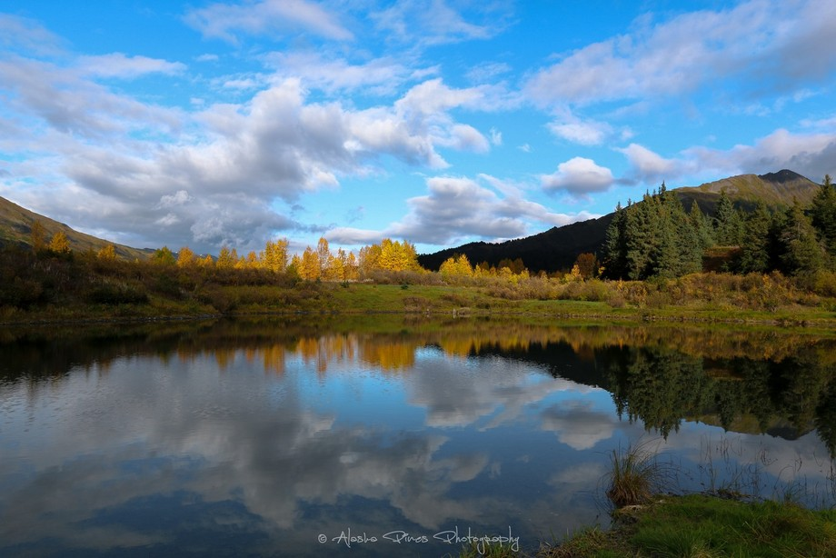 I found this hidden pond while doing some off the beaten path meandering near Hope, Alaska. The gorgeous fall colors were making their debut, which made for a great backdrop against the still waters.