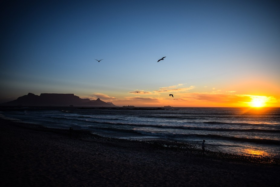 This was taken on a warm December afternoon in Blouberg. Having to chase the Hartlaubs Gulls and ...