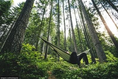 man on the hammock