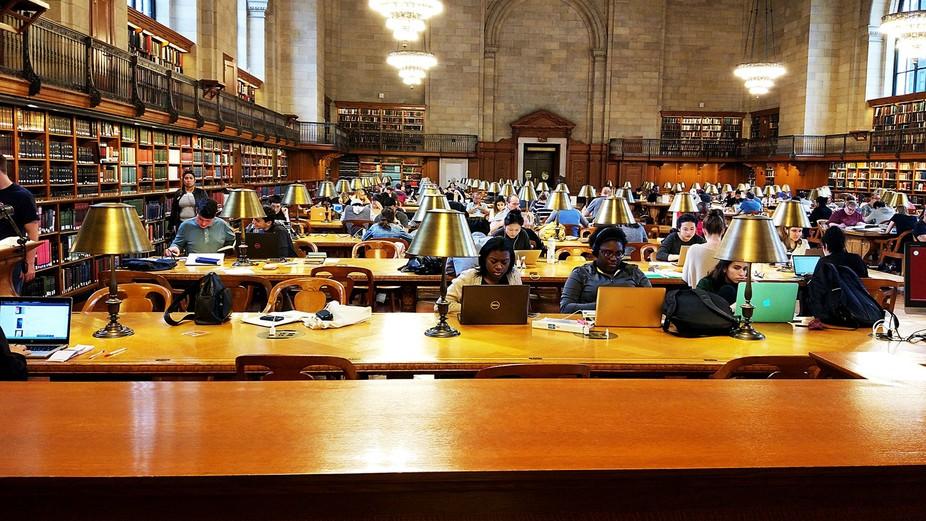 NY library-506